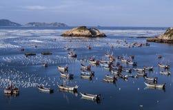 Vissersboten op het overzees Stock Fotografie