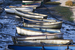 Vissersboten in Oude Leigh, Essex, Engeland Royalty-vrije Stock Foto's