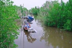 Vissersboten in overzees en mangrovebos Stock Foto