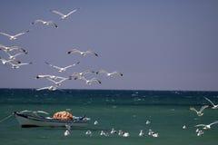 Vissersvaartuig en de vogels. Royalty-vrije Stock Afbeelding