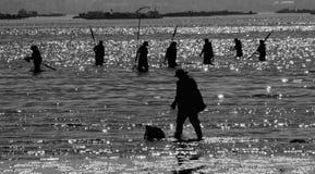 Vissersvrouwen het werken royalty-vrije stock foto