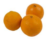 Vissna apelsiner på vit bakgrund Arkivfoto