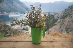 Vissna blommor i en grön behållare med suddiga berg i bakgrunden tid för fjärdkotormontenegro morgon arkivbilder