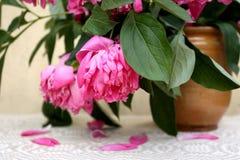 Vissna pionen skorrar blommor i en tappninglera Arkivbilder