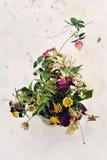 vissnade blommor Royaltyfri Bild