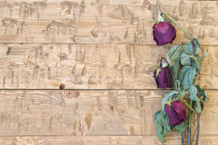 Vissnade härliga rosor på en lantlig tabell Arkivbild