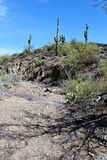 Vista βελόνων υφαντών άποψη, σύνδεση Apache, Αριζόνα, Ηνωμένες Πολιτείες Στοκ Εικόνες