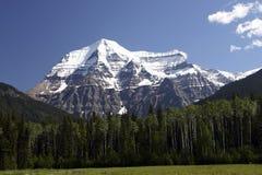 Vista 182 della montagna Robson Fotografia Stock