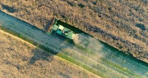Vista aérea acima da ceifeira de liga de trabalho em um campo no por do sol Colheita dos tratores e dos equipamentos agrícolas vídeos de arquivo