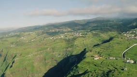 Vista aérea Cliff Coastline alto sempre-verde video estoque