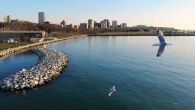 Vista aérea da cidade americana no alvorecer Prédios, fre Fotografia de Stock