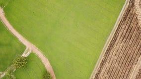 Vista aérea da curva do zangão de campos verdes do arroz filme