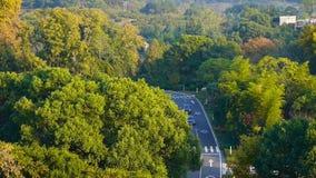 Vista aérea da estrada de floresta montanhosa no outono, carros que correm na estrada video estoque