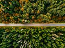 Vista aérea da estrada na paisagem da queda da floresta do outono com as árvores da estrada, as vermelhas e as amarelas Fotografia de Stock Royalty Free