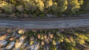 Vista aérea da estrada rural da mola na floresta do pinho amarelo com neve em Rússia rural imagem de stock