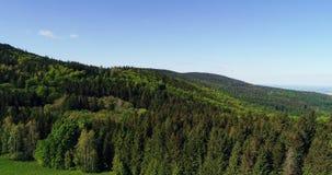 Vista aérea da floresta filme