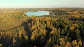 Vista aérea da floresta do outono e de um lago pequeno vídeos de arquivo
