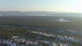 Vista aérea da floresta do taiga no fundo da paisagem nevado do inverno com montes filme
