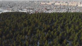 Vista aérea da floresta e da cidade do inverno video estoque