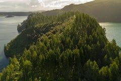 Vista aérea da floresta da sequoia vermelha e de lagos verdes e azuis, Rotorua fotos de stock