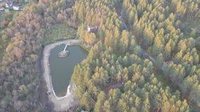 Vista aérea da lagoa na floresta, tempo do outono Natureza e paisagem, vista aérea de uma floresta e lagoa, outono filme