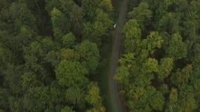 Vista aérea da montanha Goc video estoque