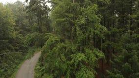 Vista aérea da montanha Goc filme