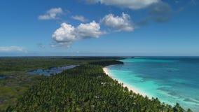 Vista aérea da praia tropical da ilha, República Dominicana Recurso de Baravo, Punta Cana video estoque