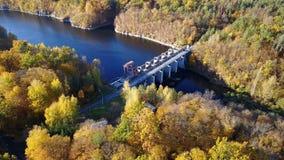 A vista aérea da represa no rio com árvores cobriu a folha amarela vídeos de arquivo