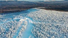 Vista aérea da trilha do esqui cercada por cabines da floresta e do teleférico no inverno Vista de acima vídeos de arquivo