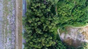 Vista aérea das montanhas e da floresta acima, com estrada Imagem de Stock