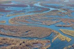 Vista aérea de árboles inundados durante la inundación de la primavera Imagenes de archivo