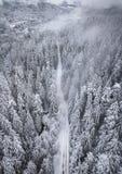 Vista aérea de árboles nevados y del camino nevado en el m fotografía de archivo libre de regalías