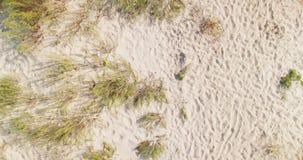 Vista aérea de arriba hacia abajo de las dunas blancas de la playa de la arena en la región de Kiliya, Bessarabia ucraniano almacen de video