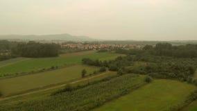 Vista aérea de campos del maíz almacen de video