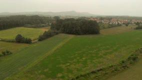 Vista aérea de campos del maíz metrajes