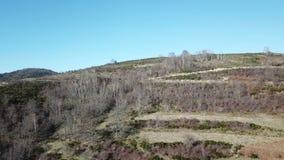 Vista aérea de campos pirenáicos en Occitanie, Francia metrajes