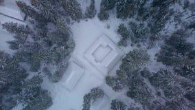 Vista aérea de casas y del bosque de madera del invierno almacen de metraje de vídeo
