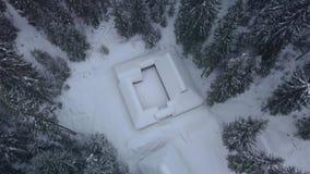 Vista aérea de casas y del bosque de madera del invierno almacen de video