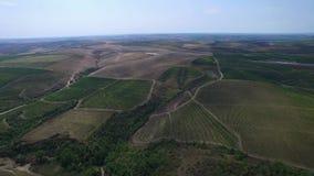 Vista aérea de Danubio y de los viñedos, Cernavoda, Rumania almacen de metraje de vídeo