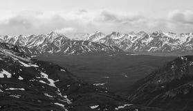 Vista aérea de Denali Foto de Stock Royalty Free