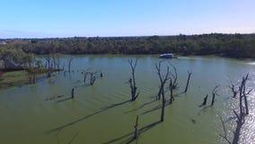 Vista aérea de gomas muertas y del día de fiesta Murray River Australia de la casa flotante almacen de video