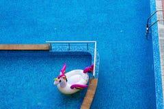 Vista aérea de inflable colorido en agua de la piscina Foto de archivo libre de regalías