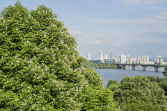 Vista aérea de Kiev com rio de Dnipro ucrânia fotografia de stock