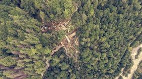 Vista aérea de la caída doble del agua en un bosque Fotografía de archivo