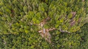 Vista aérea de la caída doble del agua en un bosque Fotografía de archivo libre de regalías