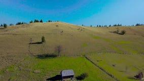 Vista aérea de la casa rural y naturaleza de las montañas cárpatas almacen de metraje de vídeo