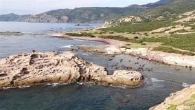 Vista aérea de la costa del Sardina almacen de video