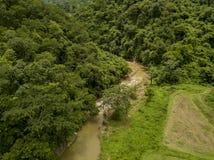 Vista aérea de la lluvia verde enorme Forest Mountain imagen de archivo