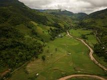 Vista aérea de la lluvia verde enorme Forest Mountain fotos de archivo libres de regalías